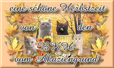 An den Beitrag angehängtes Bild: http://www.vom-akaziengrund.de/gb/herbst06.jpg